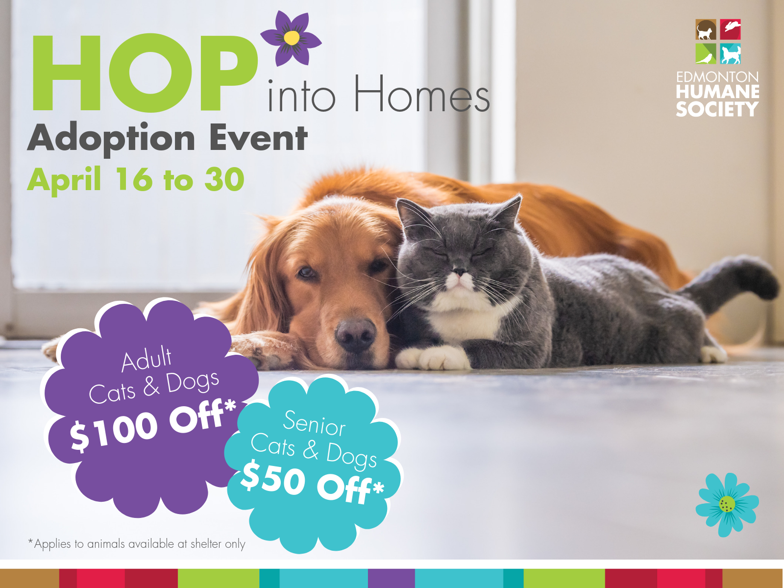 HOP INTO HOMES ADOPTION EVENT - Edmonton Humane Society